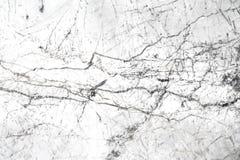 Textura de mármol blanca hermosa Fotografía de archivo libre de regalías