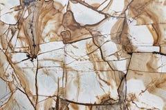 Textura de mármol de Brown foto de archivo libre de regalías