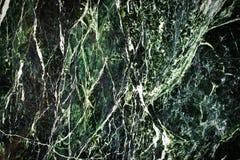 Textura de mármol verde del fondo Fotografía de archivo