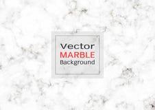Textura de mármore branca abstrata, fundo do teste padrão do vetor Imagem de Stock