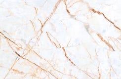 Textura de mármore com os lotes do contraste corajoso que veiam Imagens de Stock