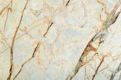 Textura de mármore com os lotes do contraste corajoso que veiam Imagem de Stock