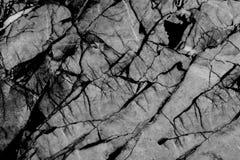 Textura de mármore preto e branco, estrutura detalhada do mármore Imagens de Stock