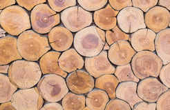 Textura de madeira Imagem de Stock Royalty Free