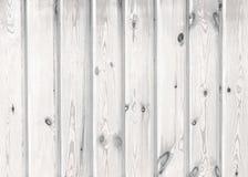 Textura de madeira branca Imagens de Stock