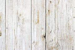 A textura de madeira branca com fundo natural dos testes padrões Foto de Stock Royalty Free