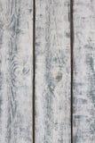 Textura de madeira branca da parede Imagem de Stock