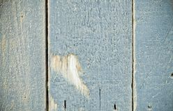 Textura de madeira cinzenta Foto de Stock