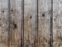 Textura de madeira cinzenta natural perfeita Imagens de Stock Royalty Free