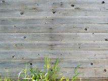 Textura de madeira cinzenta natural perfeita Imagens de Stock