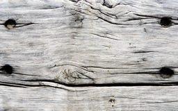 Textura de madeira cinzenta natural perfeita Foto de Stock