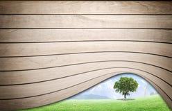 Textura de madeira com árvore Imagens de Stock Royalty Free