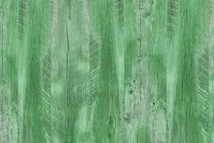 Textura de madeira com testes padrões naturais, textura de madeira verde Foto de Stock