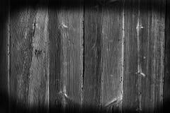 textura de madeira com testes padrões, tom preto e branco Imagens de Stock