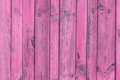 A textura de madeira cor-de-rosa velha com testes padrões naturais Fotos de Stock