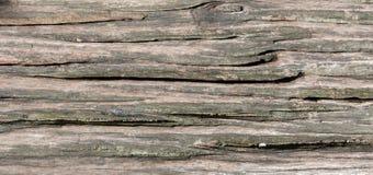 Textura de madeira da casa Fotos de Stock