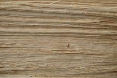 Textura de madeira da descoberta foto de stock