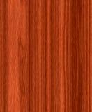 Textura de madeira da madeira da grão Imagem de Stock
