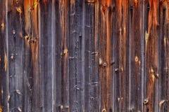 Textura de madeira da parede foto de stock