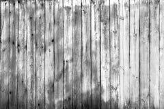 Textura de madeira da parede em preto e branco Imagem de Stock