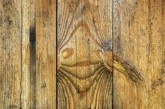 Textura de madeira da prancha Foto de Stock Royalty Free