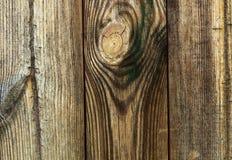 Textura de madeira da prancha Fotos de Stock
