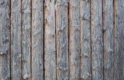 Textura de madeira da prancha para o fundo fotografia de stock