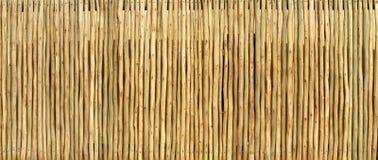 Textura de madeira da tela de Polo Imagem de Stock Royalty Free