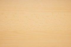Textura de madeira de Baviera da faia do Close-up foto de stock royalty free
