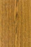 Textura de madeira de Durmast Ðak Imagem de Stock