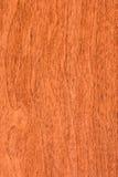Textura de madeira de madeira vermelha Imagens de Stock Royalty Free