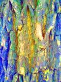 Textura de madeira Disposição de marcagem com ferro quente bonito com retângulo cinzento um curso intestinal para o texto ou a im imagens de stock royalty free