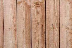 Textura de madeira do close up Fotos de Stock Royalty Free