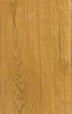 Textura de madeira do corte Fotografia de Stock