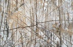 Textura de madeira do corte imagem de stock