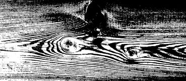 Textura de madeira do grunge Fundo isolado de madeira natural Ilustração do vetor Fotos de Stock Royalty Free