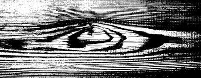 Textura de madeira do grunge Fundo isolado de madeira natural Ilustração do vetor Imagens de Stock