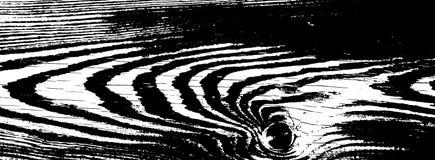 Textura de madeira do grunge Fundo isolado de madeira natural Ilustração do vetor Imagem de Stock