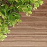 Textura de madeira do grunge velho com folhas Foto de Stock Royalty Free