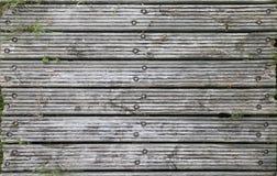 Textura de madeira do molhe Imagens de Stock Royalty Free