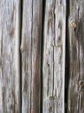 Textura de madeira dois Imagens de Stock