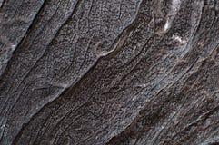 Textura de madeira escura fotografia de stock royalty free