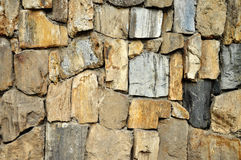 Textura de madeira fóssil, textura de pedra fóssil foto de stock