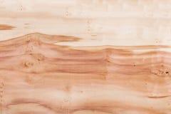 Textura de madeira, foto conservada em estoque, árvore velha do fundo Fotografia de Stock Royalty Free