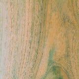 Textura de madeira, foto conservada em estoque, fundo velho Fotos de Stock
