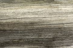 Textura de madeira, fundo de madeira de Brown Foto de Stock Royalty Free
