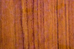 Textura de madeira, fundo, papel de parede Fim acima Foto de Stock