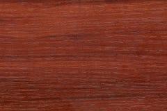 Textura de madeira lustrada Fotos de Stock Royalty Free