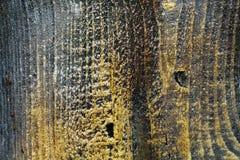 Textura de madeira marrom velha, foco macio foto de stock royalty free