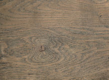 Textura de madeira morna Imagem de Stock
